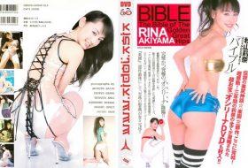 秋山莉奈 BIBLE