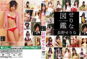 [LPFD-209] Serina Nagano 長野せりな せりな図鑑