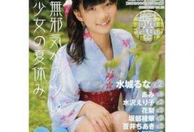 Moecco Vol.33 (2011)(マイウェイムック)