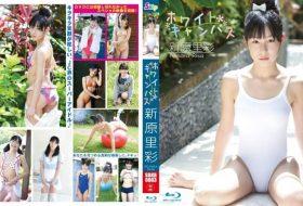 SBKB-0003 ホワイトキャンバス 新原里彩