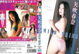 [WBDV-0009] Haruna Yabuki 矢吹春奈 – WILD THING