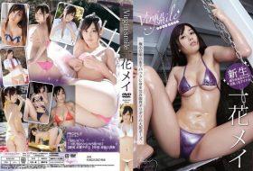 [BUQH-042] Ichihana Mei 一花メイ – Virgin Smile
